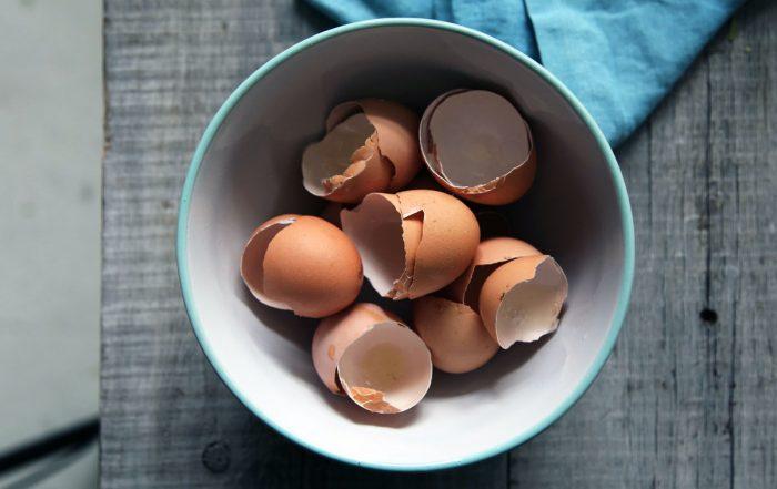 Cangkang Telur Untuk Tanaman